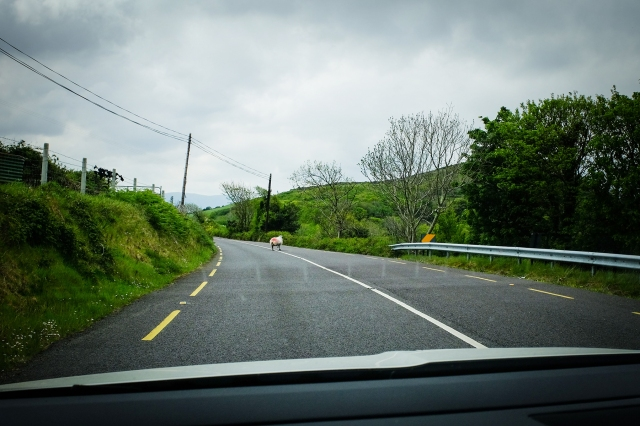 Ireland-24