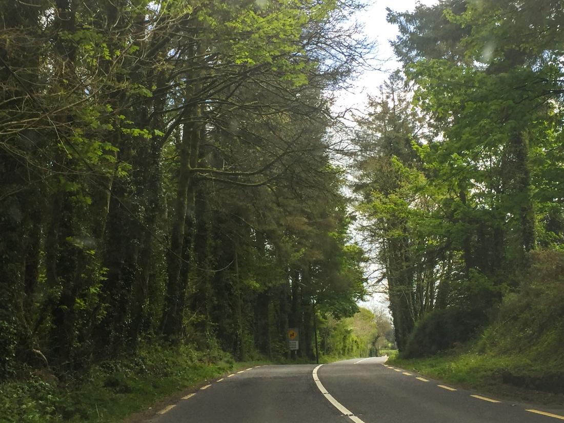 Ireland Part 3-44