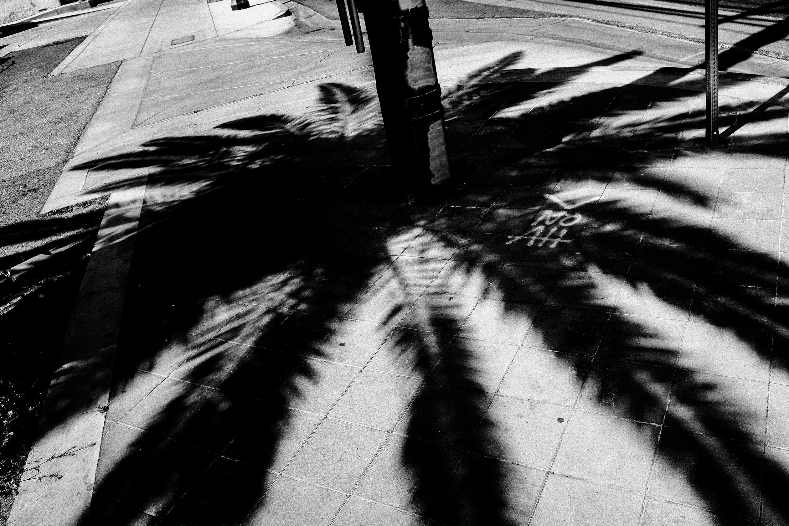 Street Photography Work-34